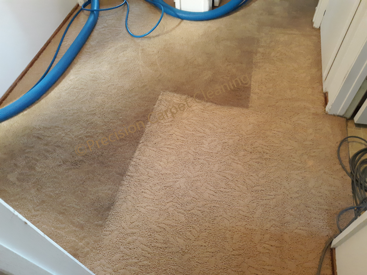 Carpet Cleaning Santee 92071