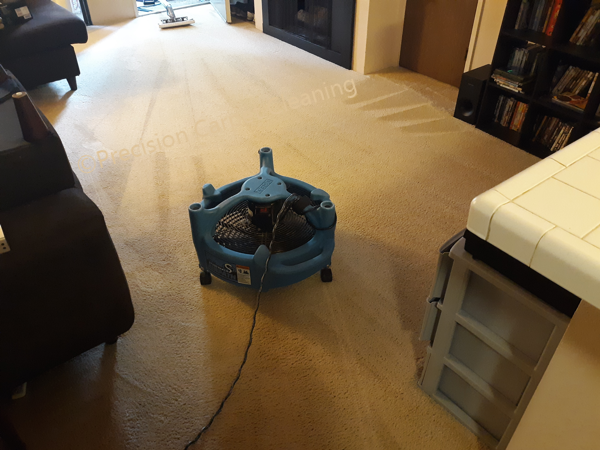 Serra Mesa Carpet Cleaning