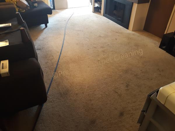 Serra Mesa Carpet Cleaning 92123