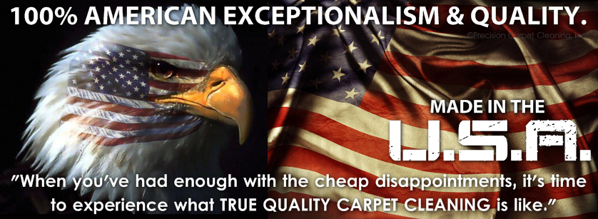 Quality American Exceptionalism In Carpet Cleaning