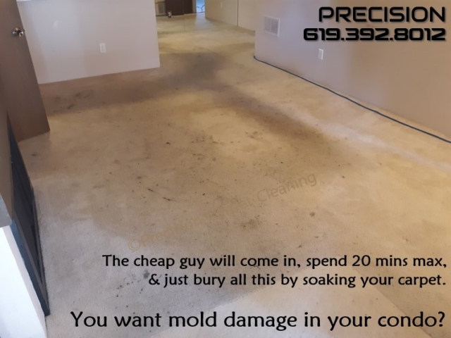 Carpet Cleaning In The Serra Mesa Area
