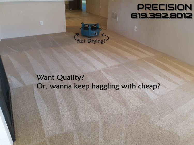Carpet Cleaning Quality In Serra Mesa