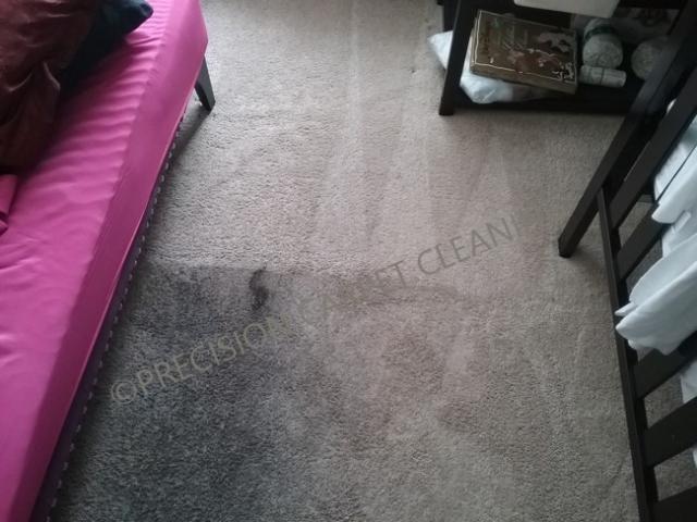 Carpet Cleaning In Tierrasanta 92124