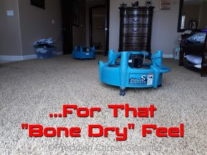 Dry Carpet Cleaning San Diego