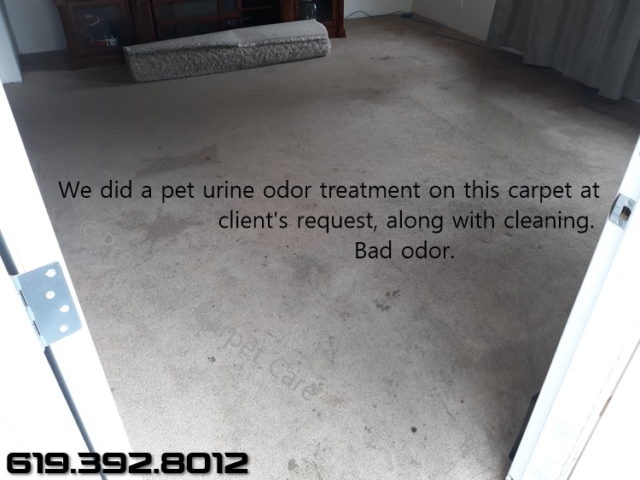 Pet Urine Odor Treatment San Diego