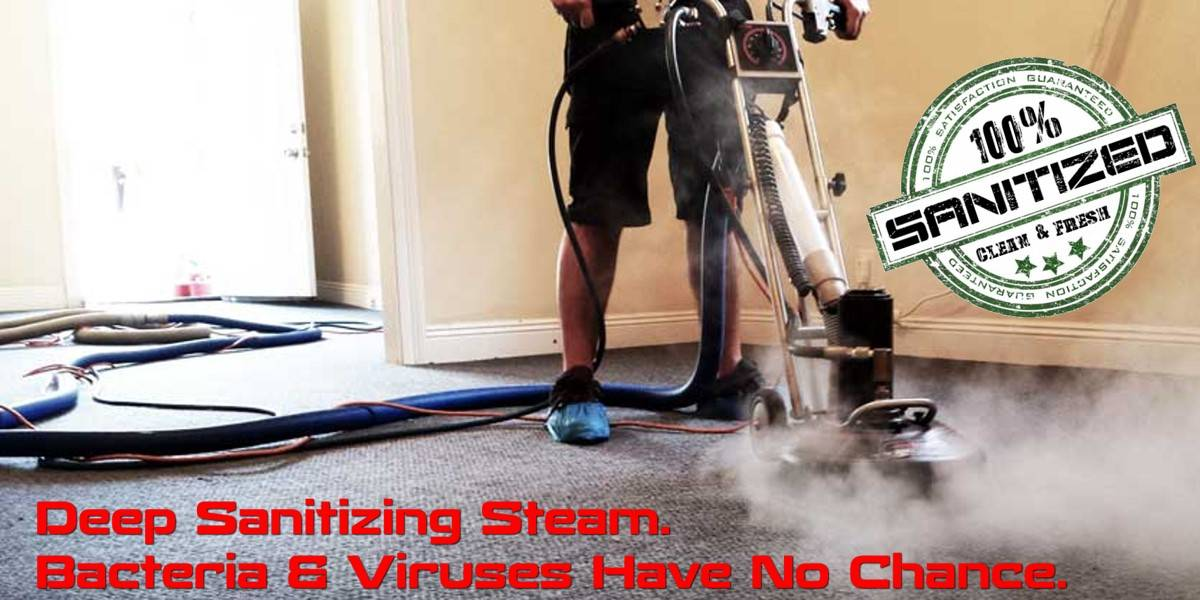 Non Toxic Carpet Cleaning Service