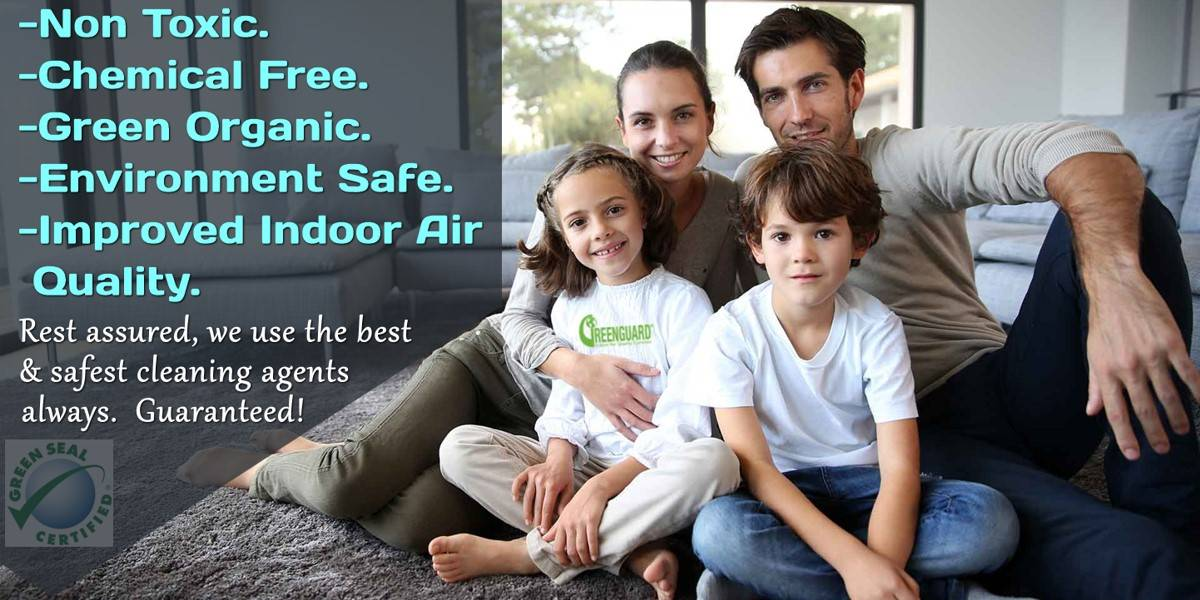 Family Eco Friendly Carpet Cleaners